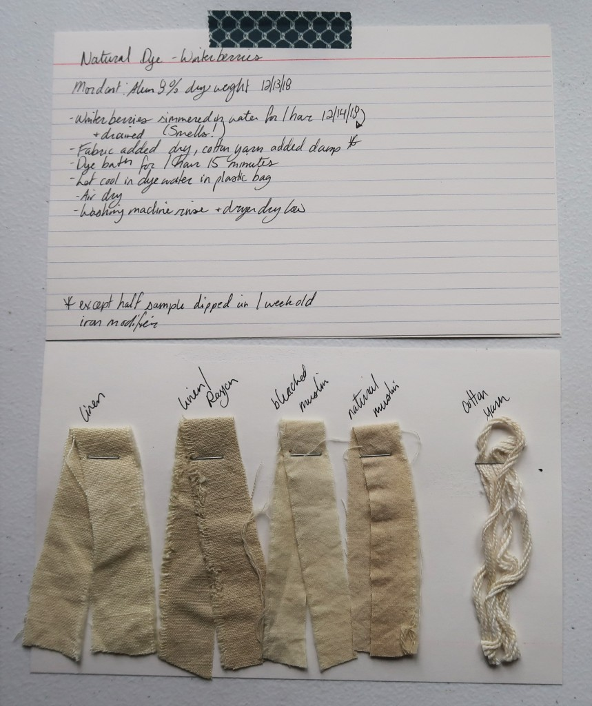 Photo of two index cards laid out on a white table. The top index card has written information detailed in text on this page for the winterberry dye.  The bottom index card has 5 dye samples stapled to it. There are 4 fabric strips in linen, linen/rayon, bleached muslin, and natural muslin and 1 cotton yarn. They are all in shades of a light beige/tan color. The linen/rayon is a little more grey than the others. The natural muslin is a little more brown than the others.